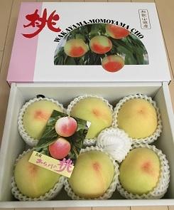 清水白桃1