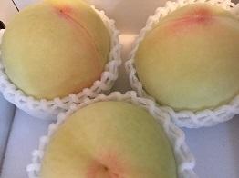 清水白桃2