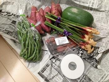 南伊豆四季の野菜